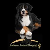 Amherst Animal Hospital icon