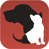 Animal Dogtor icon