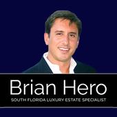 Brian Hero icon