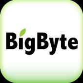 BigByte 大樹國際 icon