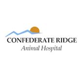 Confederate Ridge AH. icon