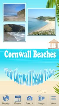 Cornwall Beaches poster
