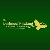 DARTMOORHAWK icon