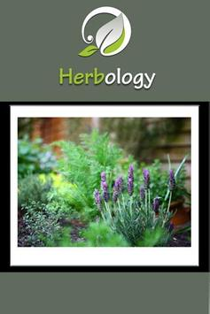 Herbology On The Go poster