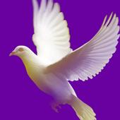 Hope Community Church icon