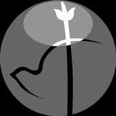 Iglesia Shalom icon