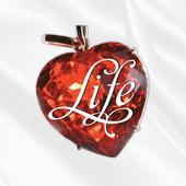 Top Life Eventos icon