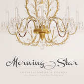 Morningstar Entertainment icon