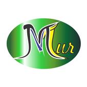 MV Tur icon