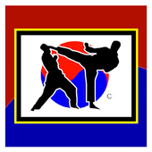 Pilsung Martial Arts icon