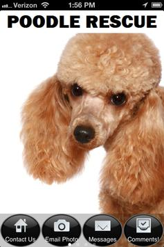 Poodle Rescue for Android - APK Download