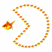 Yang Ming Fish Merchant icon