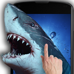 APK Shark Attack - Magic Touch