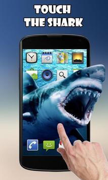 Прикоснись к акуле постер
