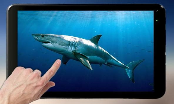 Shark Attack - Magic Touch captura de pantalla 4