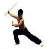 Martial Arts Around the World أيقونة