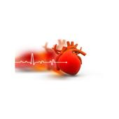 Gav-Med Solutions icon