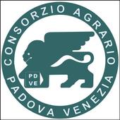 Linee Difesa 2013 icon