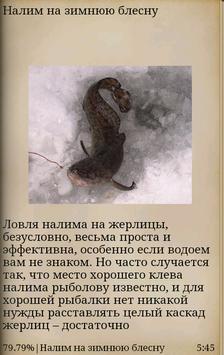 Зимнее блеснение apk screenshot