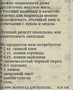 Лучшие рецепты шашлыка apk screenshot