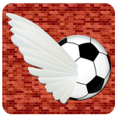Soccer Bird icon
