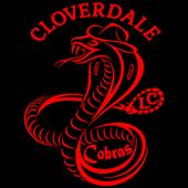Cobra Connect icon
