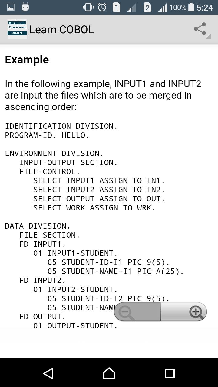 Data division in cobol program