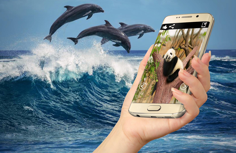 أفضل خلفيات الحيوانات للهاتف For Android Apk Download