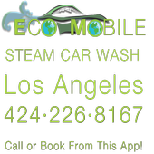 Eco Mobile Steam Car Wash icon