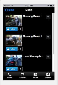 Eco Mobile Steam Car Wash screenshot 2