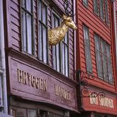 Bergenconference icon
