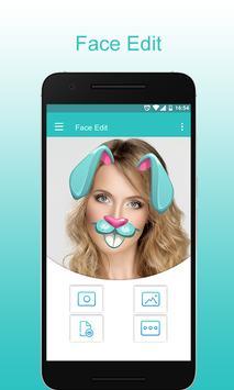 Face Edit poster