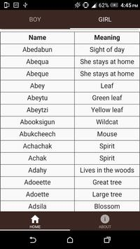 Native American Baby Names apk screenshot