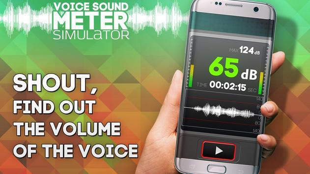 Voice Sound Meter simulator screenshot 3