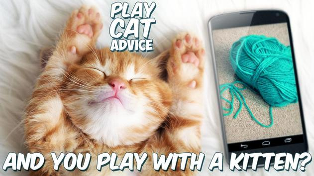 Play Cat Advice poster