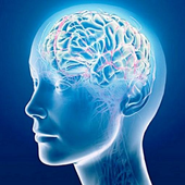 Hard Brain Teasers icon