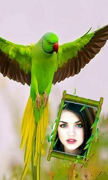 Beautiful Birds Photo Frames poster