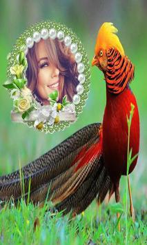 Beautiful Birds Photo Frames screenshot 2