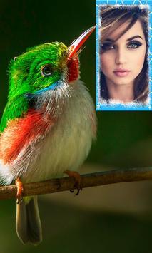 Beautiful Birds Photo Frames screenshot 3