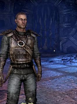 Guide For The Elder Scrolls apk screenshot