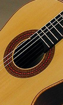 Classical Guitar Wallpapers apk screenshot
