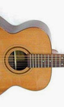 Sevenstring Guitar Wallpapers apk screenshot