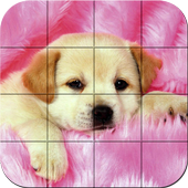 Puzzle - Puppies icon