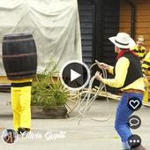 InstaVideos - Funny Videos 2018 For WhatsApp icon