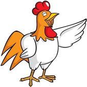Polly App icon