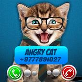 Fake Call Video Cat Joke icon