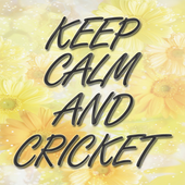 Keep Calm And Cricket icon