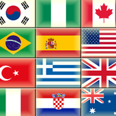 The flags of the world icon