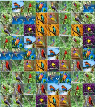Birds Puzzle Games For Kids screenshot 1