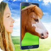 Pony Face Scanner joke icon